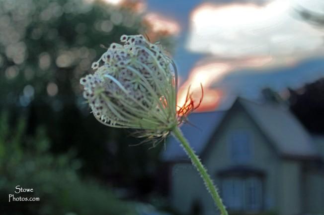 Waterbury Vermont - August Sunset