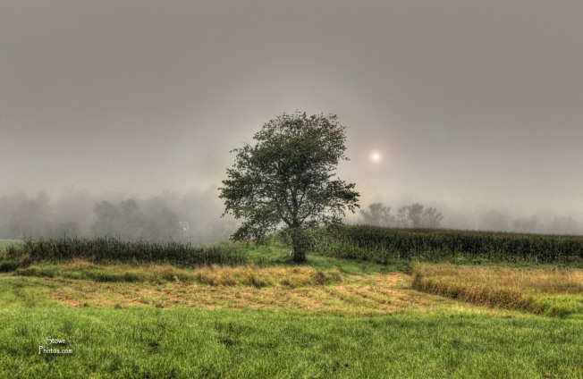 Stowe VT - Morning Fog on West Hill Road
