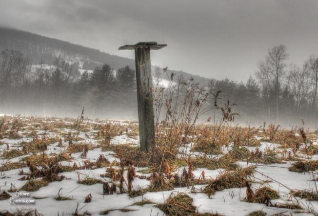Stowe, VT - December Field