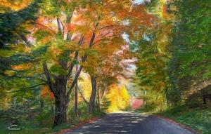 Stowe Hollow - Sept 28, 2014