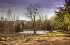 2015 4 14 stowe hollow pond