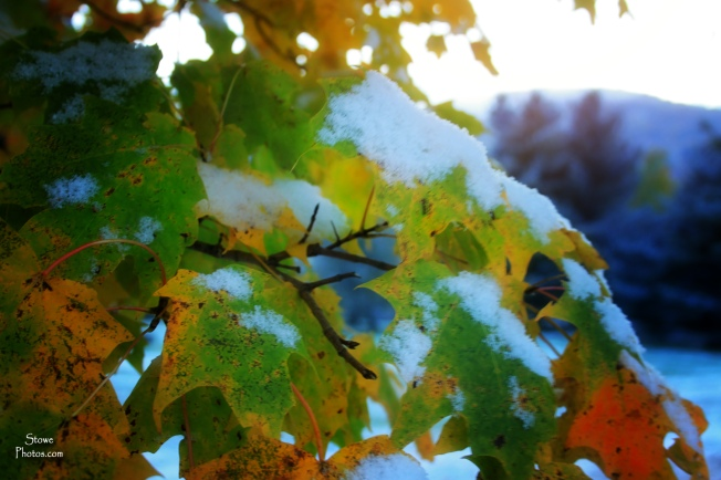 Stowe, Vermont - Snow and Foliage - October 18, 2015