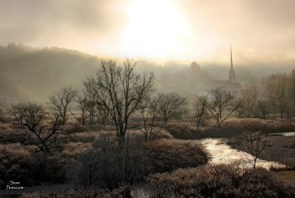 2015 12 7 scc trees fog