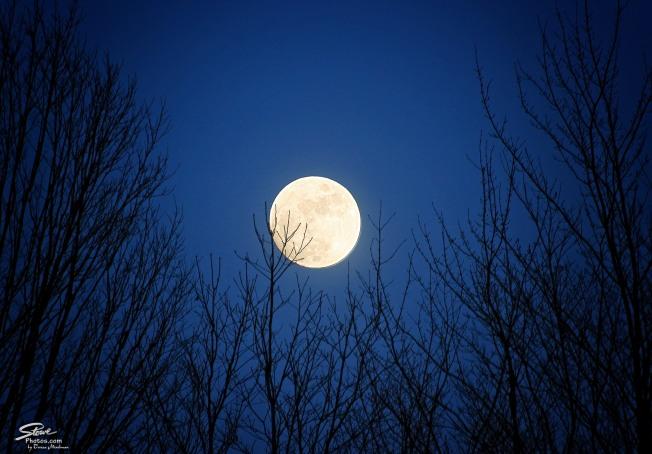 2016 1 22 moon