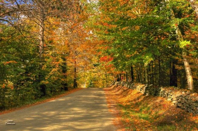 2016-10-10-sanborn-road