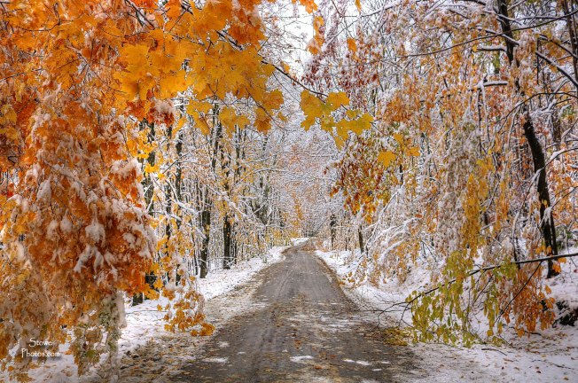2016-10-23-hyde-park-snowy-road