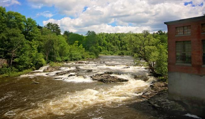 2017 7 3 hyde park cadys falls - Copy - Copy