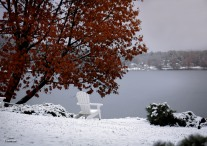 2018 11 13 Lake Winnipesaukee snow and tree