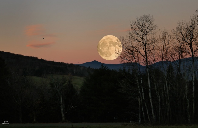 2016 11 14 stowe full moon