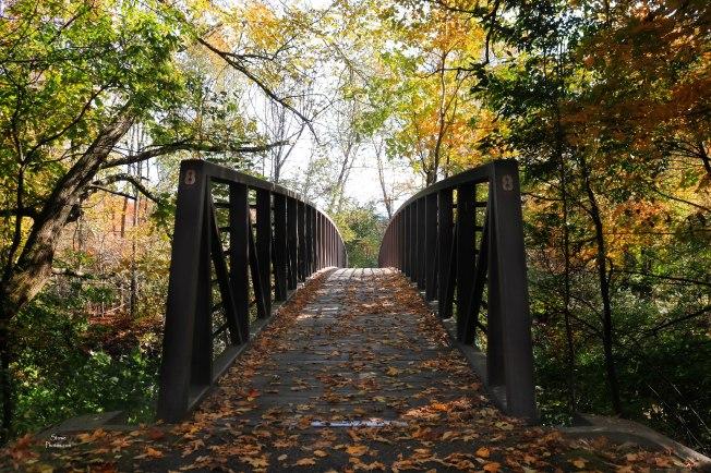 2019 10 08 stowe rec path bridge